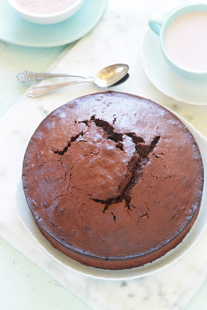 Gateau Au Yaourt Et Cacao En Poudre Recette Facile Cuisine Culinaire