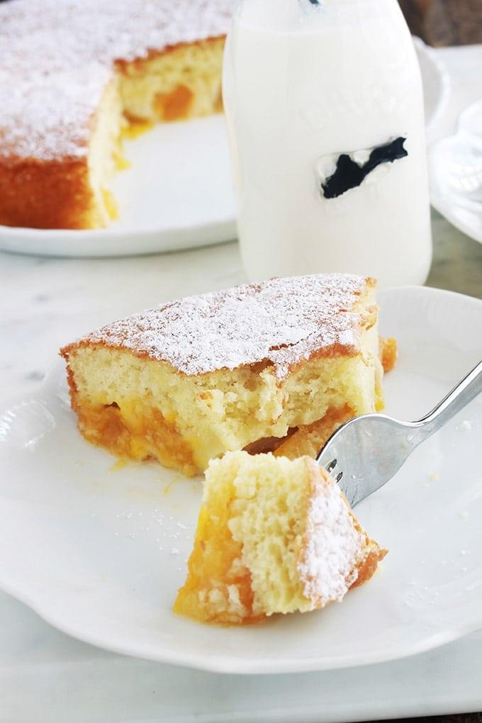 Ce gâteau aux prunes jaunes est très moelleux et léger. C'est une recette avec de l'huile, sans beurre. Très facile et rapide. Peut se faire avec toutes les variétés de prunes (jaunes, rouges, noires, quetsches, mirabelles, …), et même avec d'autres fruits comme les abricots, les pêches, etc Accompagné d'une bonne tasse de café ou de thé, yummy!