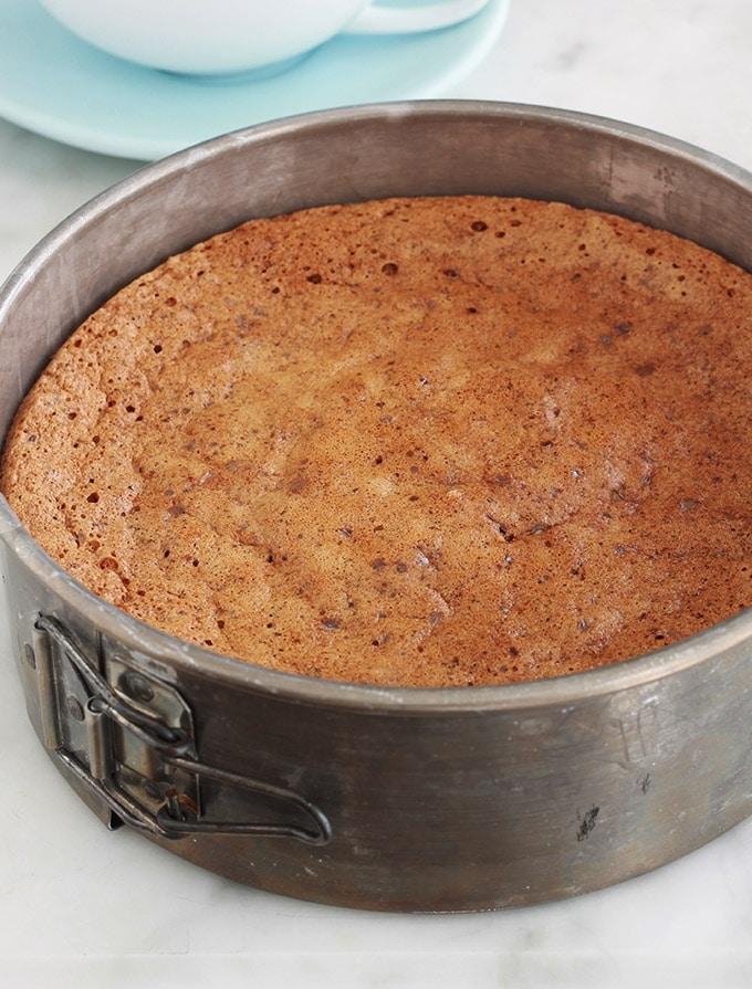 Voici une délicieuse recette de gâteau aux noix sans gluten. Facile à faire, moelleux, fondant et légèrement croquant. Des noix hachées, oeufs, beurre et sucre. Excellent pour le goûter et le petit déjeuner.